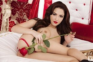 Cassie Laine Playboy Cybergirl Strips Sexy Lingerie